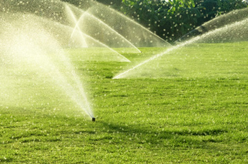 A number of sprinklers water a grassy field