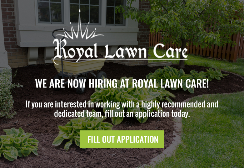 plants and mulch landscaping around house royal lawn care is now hiring